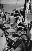¤¤  -   LOCTUDY   -  Arrivée D'un Sardinier   -  Pêche , Pêcheurs   -  ¤¤ - Loctudy