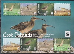 COOK ISLANDS  2017 WWF BIRD British-thighed Curlew Numenius Tahitiensis - Albatrosse & Sturmvögel