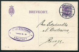 1925 Denmark 15 Ore Stationery Postcard (77 - H) Ebeltoft - Ringe - Covers & Documents