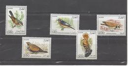 Oiseaux- Birds - Algérie (1962-...)