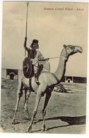 SOMALI CAMEL RIDER ADEN - Somalia