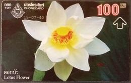 Opt. Telefonkarte Thailand -  Lotusblume (2) - Thailand