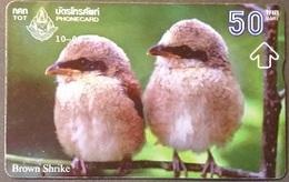 Opt. Telefonkarte Thailand - Vogel (1) - Thailand