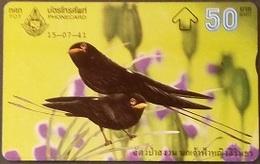 Opt. Telefonkarte Thailand - Vogel (2) - Thailand
