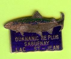 Pin's Ouananiche Plus Saguenay Lac St-Jean (Poisson) - 6GG25 - Animals