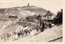 Foto Deutsche Soldaten - Marschkolonne Mit Fahrrädern Und Pferden - 2. WK - 8*5,5cm  (42527) - Krieg, Militär