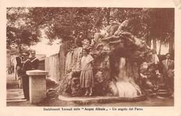 """M08331 """" STABILIMENTI TERMALI DELLE ACQUE ALBULE-UN'ANGOLO DEL PARCO """"ANIMATA-CARABINIERI-CARTOLINA  ORIG. SPED. 1931 - Tivoli"""