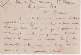 974 - ILE DE LA REUNION - CARTE LETTRE 1917 - ECRITE  DE MANAPANY VILLA LES BRISES ST PIERRE - Documentos Históricos