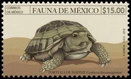 2018  Fauna De México, Tortuga De Mapimí (Gopherus Flavomarginatus) MNH STAMP Turtle Of Mapimi - Mexico