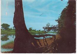 °°° 13372 - SUDAN - THE RIVER NILE - 1969 With Stamps °°° - Sudán