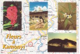 °°° 13373 - RWANDA - FLEURS A KAMONYI °°° - Rwanda