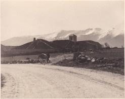 Route De Riaza à Ribota ESPAGNE 1953 Photo Amateur Format Environ 7,5 X 5,5 Cm - Lugares