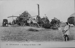 En Beauce : Le Battage Du Grain - France