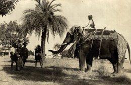 BOMBAY INDIA INDE  VISIT PRINCE OF WALES ELEPHANT ELEFANTES  +- 12* 8 CMFonds Victor FORBIN (1864-1947) - Profesiones