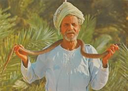Tunisie - Sud Tunisien - Charmeur De Serpents - Tunesien