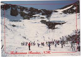 Tuckerman Ravine - Spring Skiing In The White Mountains Of N.H. - White Mountains