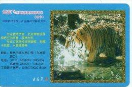 Tigre Tigra  Jungle Animal  Télécarte Chine Phonecard  Karte J63 - Jungle