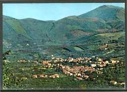 FIORINO (AV) - Panorama - Cartolina Non Viaggiata, Come Da Scansione. - Avellino