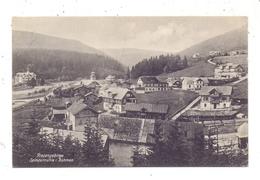 BÖHMEN & MÄHREN - SPINDLERMÜHLE / SPINDLERUV MLYN, Dorfansicht 1911 - Boehmen Und Maehren