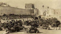 INDIA DELHI SUR LE MUR DE DELHI  CAMEL +- 15* 9 CMFonds Victor FORBIN (1864-1947) - Lugares