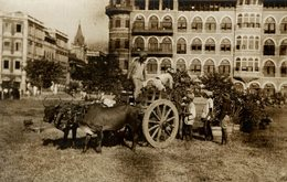 THE PRINCE OF WALES IN INDIA INDE BOMBAY OXCART ETALAGE  +- 15* 11CMFonds Victor FORBIN (1864-1947) - Lugares