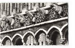 21 Dijon Les Gargouilles De L' Eglise Notre Dame CPSM PF Edit Estel 6607 Photo - Dijon