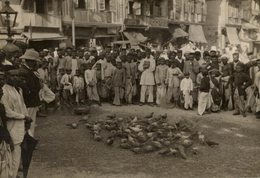 INDIA INDE BOMBAY  FEEDING THE PIGEONS   +- 15* 11CMFonds Victor FORBIN (1864-1947) - Lugares