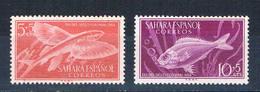 Spanish Sahara B27-28 MNH Set Fish 1953 (S1149) - Spanish Sahara