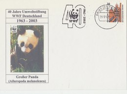 GERMANY 2003 WWF Card With Panda. - Ohne Zuordnung