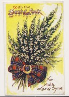 AK32 Greetings - Best Of Luck, Scottish Tartan, Heather, Horseshoe - Holidays & Celebrations