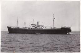AP57 Photograph - Cargoship Morelia 1948 - Boats