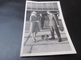 Teckel, Dachshund, Dackel,Prins Albert En Paolo In Zaventem 1959 Met Teckel - Chiens