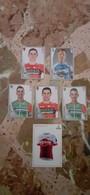 5 Figurine Panini + 1 Card Giro D'Italia - Edizione Italiana