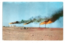 Cp, Algérie, Les Torches D'Hassi-Messaoud - Altre Città