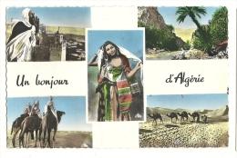 Cp, Algérie, Scènes Et Types, Multi-Vues, écrite - Algérie