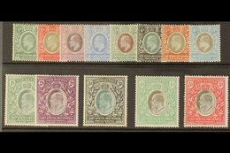 1903 - 04 Ed VII Set Complete To 5r, Wmk CA, SG 1-13, Very Fine And Fresh Mint. (13 Stamps) For More Images, Please Visi - Publishers
