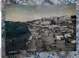 Follonica Spiaggia Di Ponente VIAGGIATA 1956 Animata - Italia