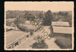 Chimay - Collège Episcopal De St. Joseph - Vue Sur Les Dépendances Et Les Jardins [AA44-4.051 - Belgique
