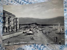 Follonica Viale Italia Animata VIAGGIATA 1956 - Italia