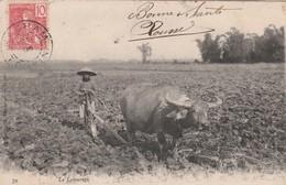 TONKIN : (asie) LE LABOURAGE - Postcards