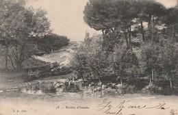 TONKIN : (asie) Rivière D'Issanka - Postcards