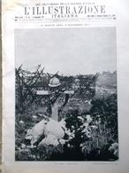 L'Illustrazione Italiana 4 Novembre 1917 WW1 Tombe Cimiteri Fiat Aviazione Carso - Guerra 1914-18