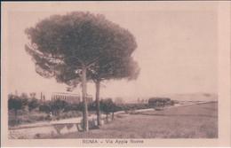 POSTAL ITALIA - ROMA - VIA APPIA NUOVA - Roma (Rome)