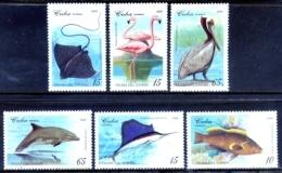 Cuba 1994 / Birds Fishes MNH Aves Peces Poisons Oiseaux Vögel Fische / C5820 34-14 - Pájaros
