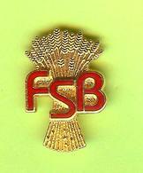 Pin's FSB - 5GG16 - Trademarks