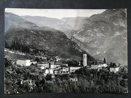 CARTOLINA ANTICA-DINTORNI DI CAMIORE-LUCCA-GREPPOLUNGO'900 - Italia