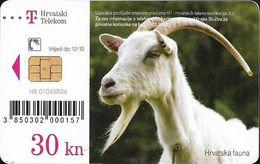 Croatia - Hrvatski Telekom - Croatian Fauna - Koza (Capra Hircus) - Exp. 12.2010, 100.000ex, Used - Croatia