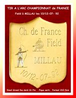 SUPER PIN'S TIR A L'ARC : CHAMPIONNATS De FRANCE Field à MILLAU (Aveyron) émail Grand Feu Doré Or Fin Texte Gravé 2X2,5 - Tiro Al Arco