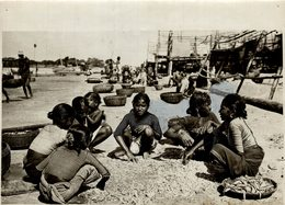 BOMBAY INDE INDIA INDUSTRIE DE POISSON SECHE  +- 20*15CMFonds Victor FORBIN (1864-1947) - Profesiones