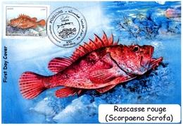 DZ Argelia FDC 1733 Pescado Pez Escorpión Rojo Fauna Marina Pescado Animales - Peces